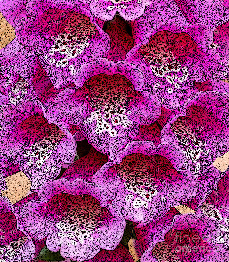 Berry Digital Art - Foxglove by Diane E Berry