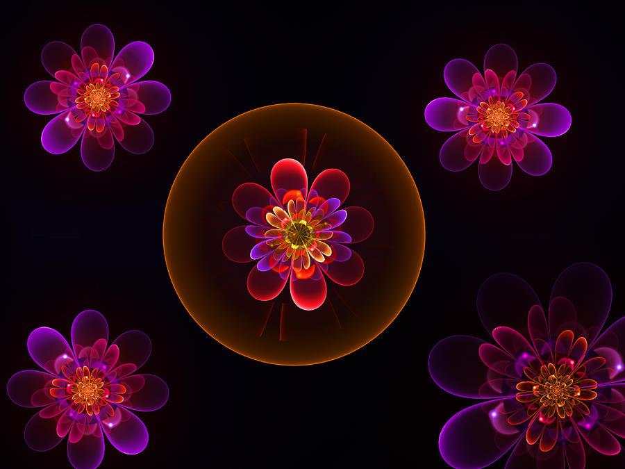 Fractal Flowers by Ernst Dittmar