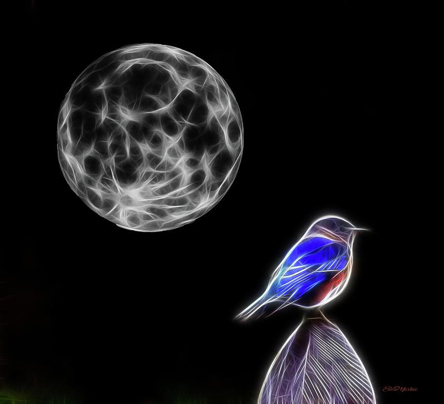 Bluebird Photograph - Fractal Moon And Bluebird by Ericamaxine Price
