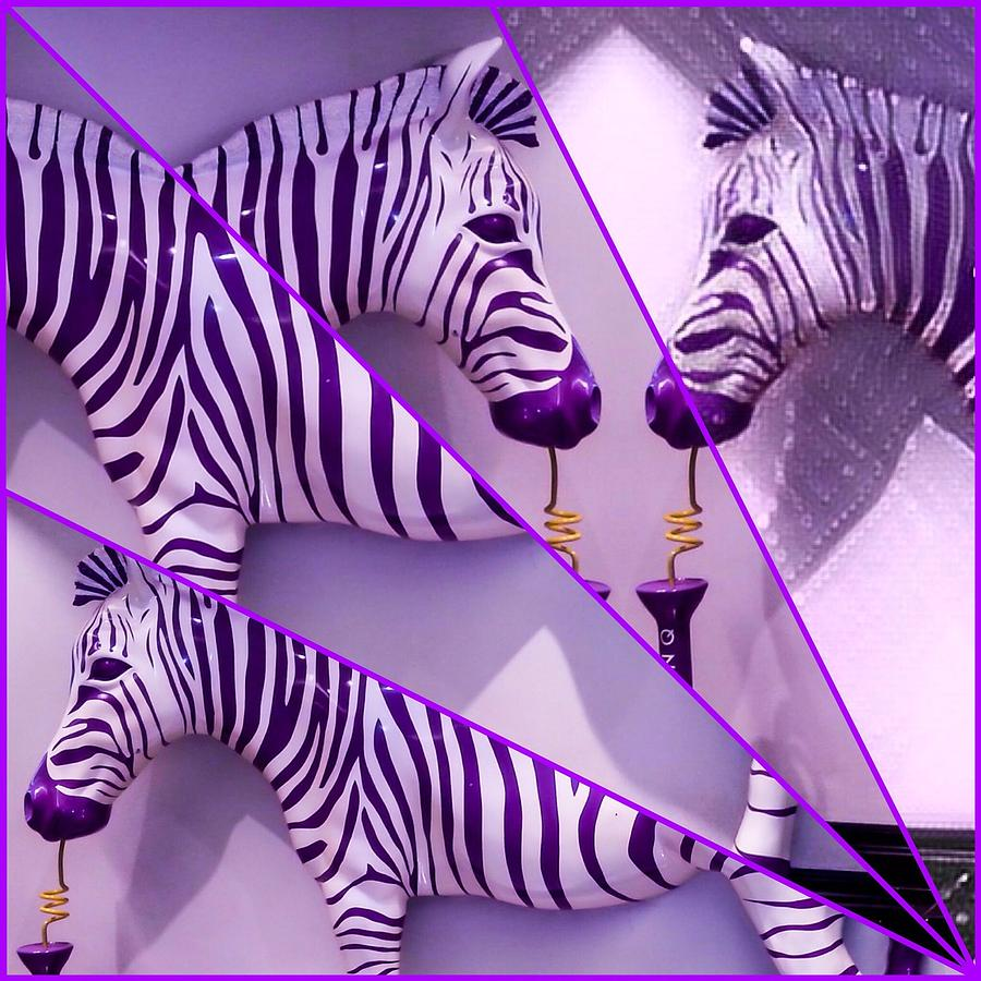 Fractured Zebras  by Karen Buford