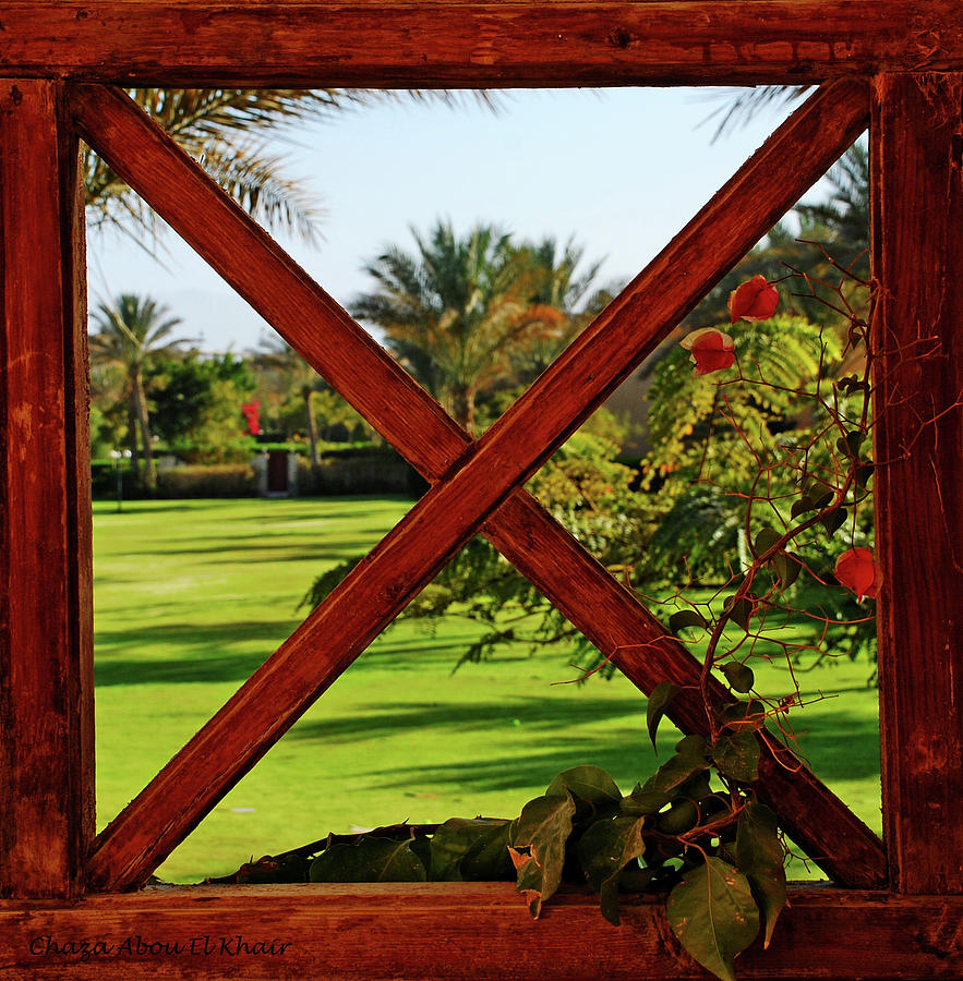 Green Photograph - Frame I by Chaza Abou El Khair