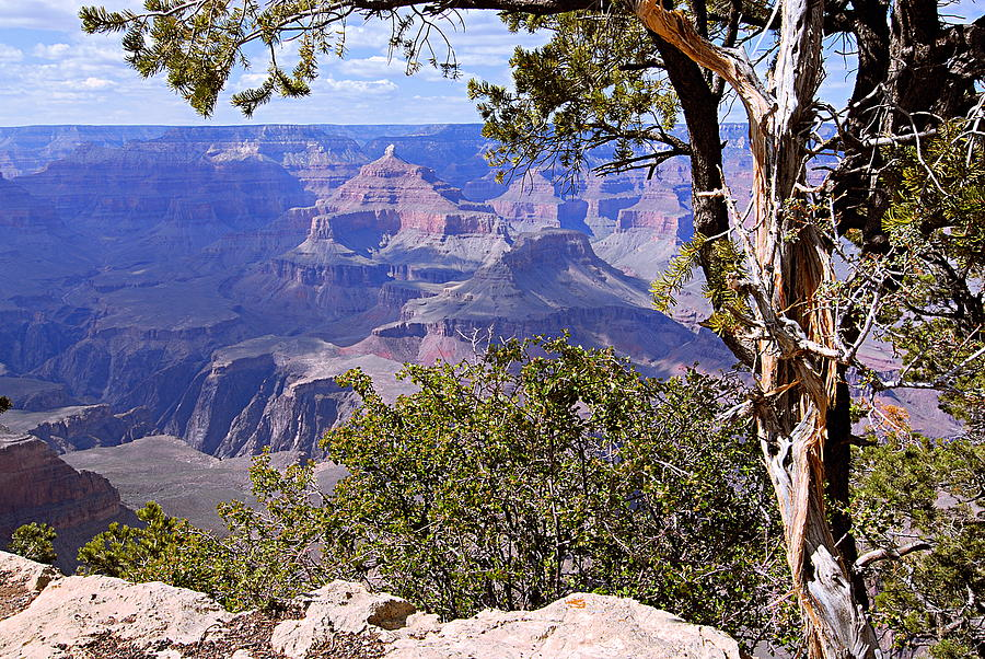 Grand Canyon National Park Photograph - Framed View - Grand Canyon by Larry Ricker