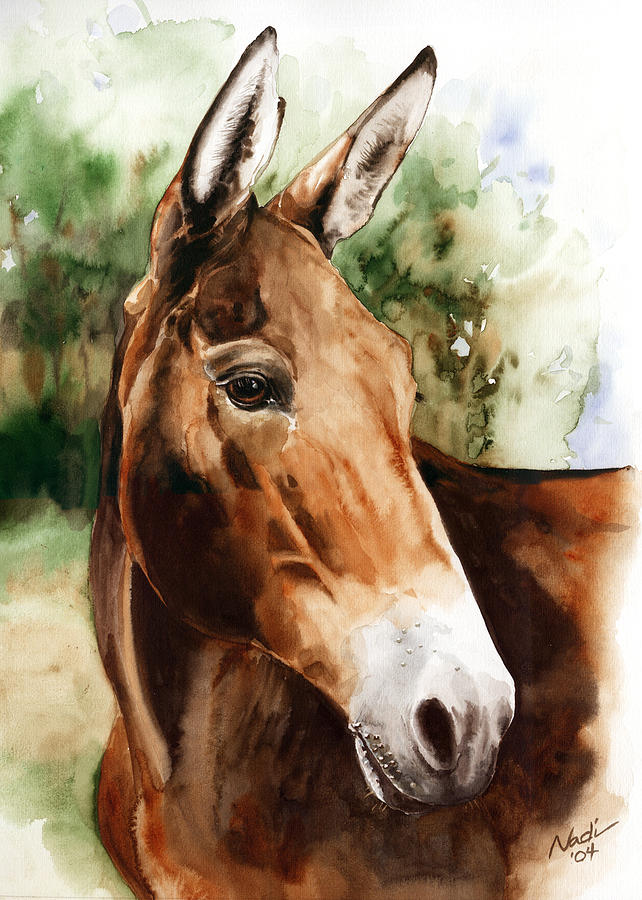 Mule Painting - Francis by Nadi Spencer