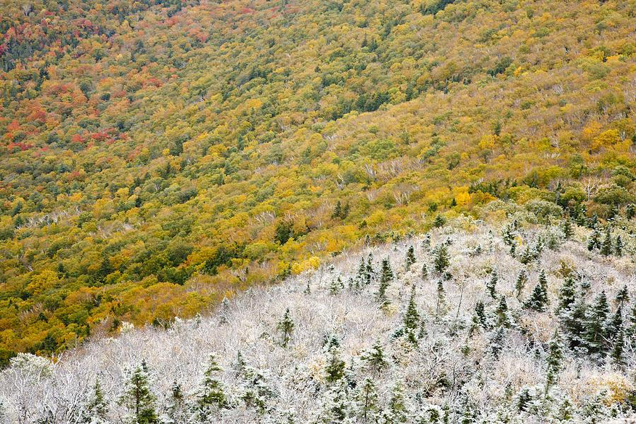 Franconia Notch Photograph - Franconia Notch State Park - White Mountains Nh Usa Autumn by Erin Paul Donovan