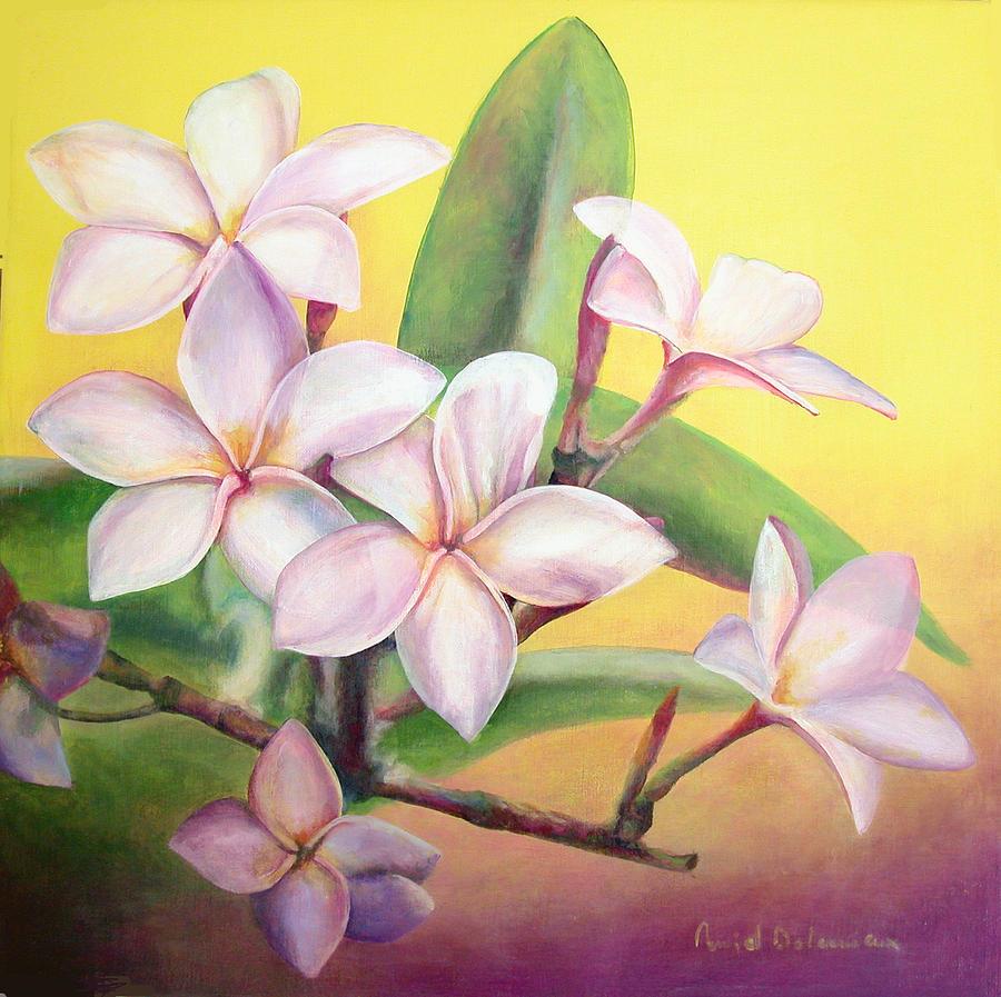 Fleurs Painting - Frangipanier by Muriel Dolemieux