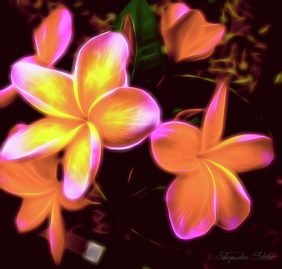 Frangipanis On The Glow by Jacqueline Sleter