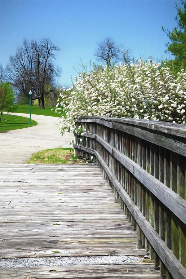 Botanical Gardens Photograph - Franklin Park Conservatory Footbridge by Tom Mc Nemar