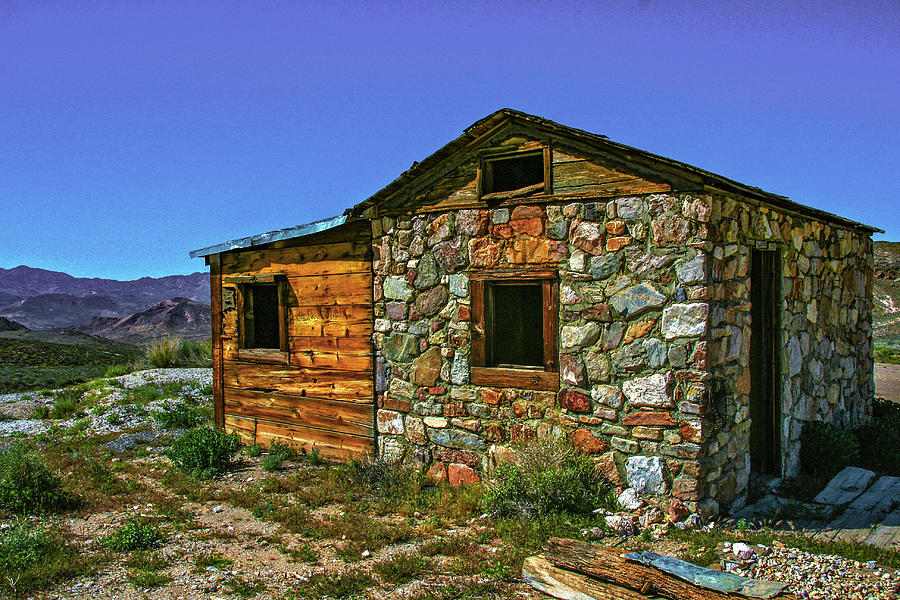 Old Abandoned House Photograph - Fraternal Twins by Robin Lyn