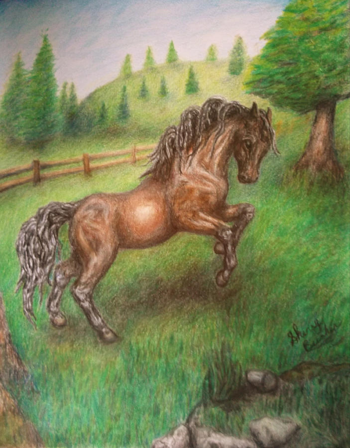 Horse Drawing - Free To Run by Sherry Bunker