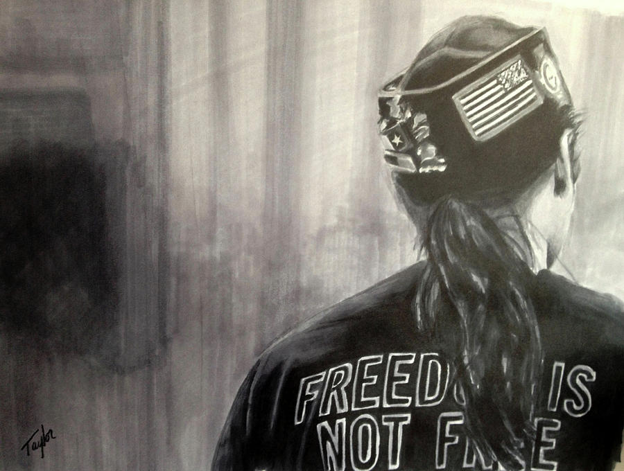 Freedom Is Not Free by Laura Taylor