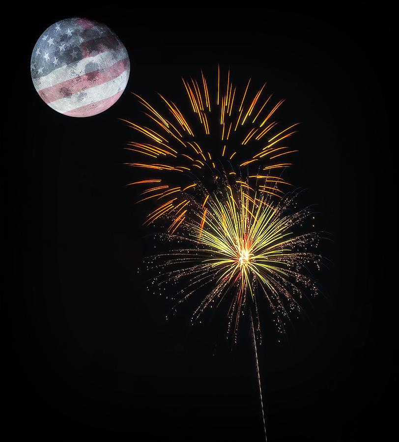 Freedom Moon by David Palmer