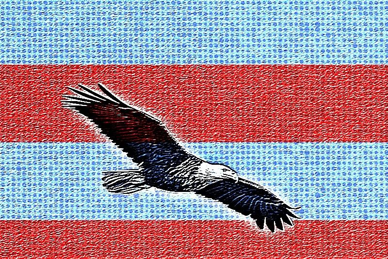 Eagle Painting - Freedom  by Robert Nacke