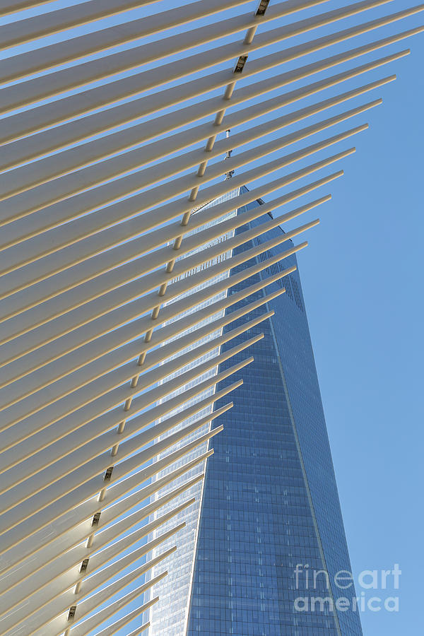 1 Wtc Photograph - Freedom Tower And Oculus IIi by Clarence Holmes