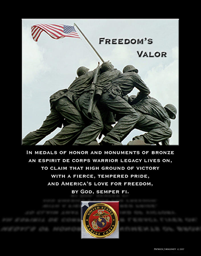 Poetry Mixed Media - Freedoms Valor II by Patrick J Maloney