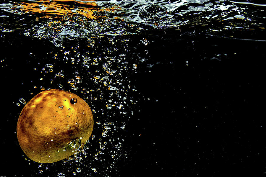 Water Photograph - Freeze The Action  by Manjot Singh Sachdeva