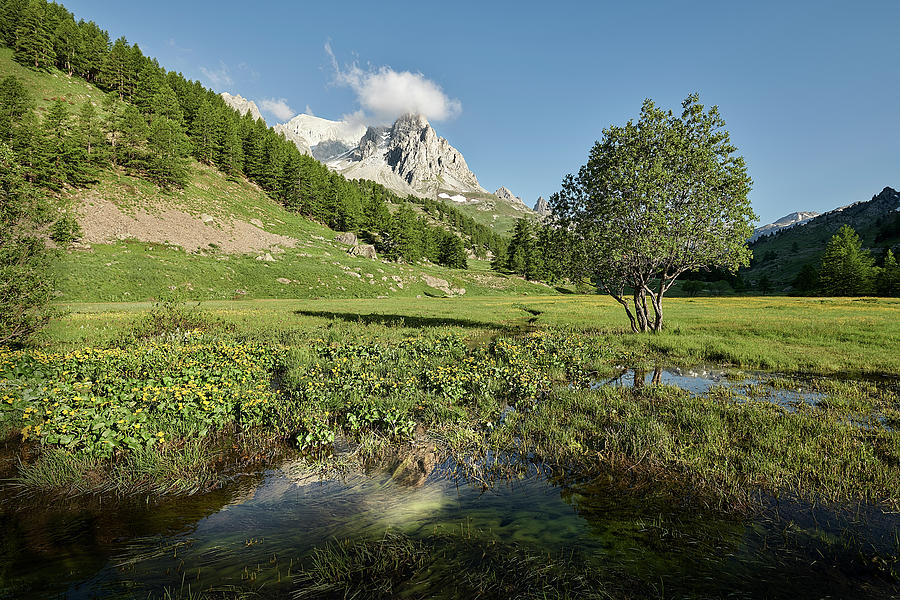 Courmayeur Photograph - French Alps Valley by Jon Glaser