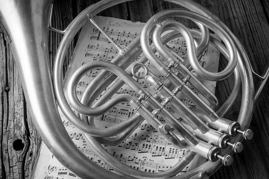 French Photograph - French Horn In Black And White by Garry Gay
