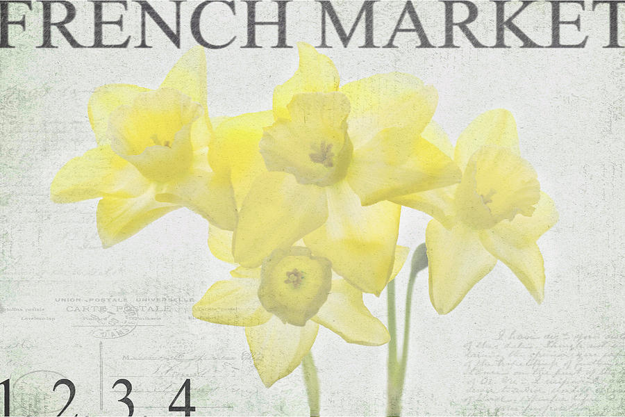 Daffodils Photograph - French Market Series C by Rebecca Cozart