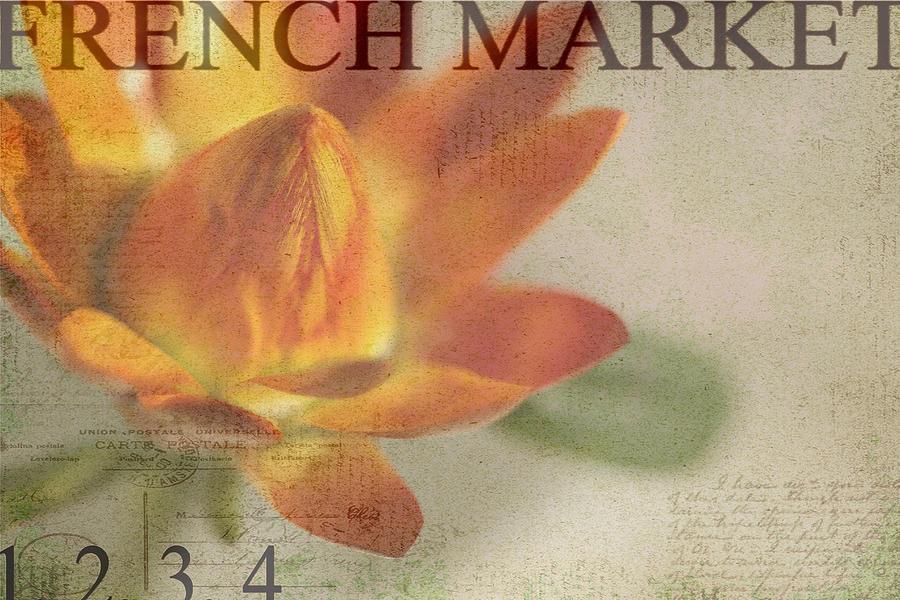 Orange Photograph - French Market Series J by Rebecca Cozart