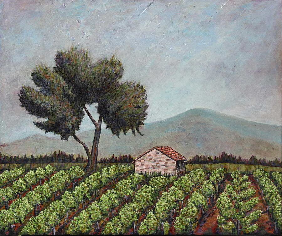French vineyard by Joselyn Holcombe