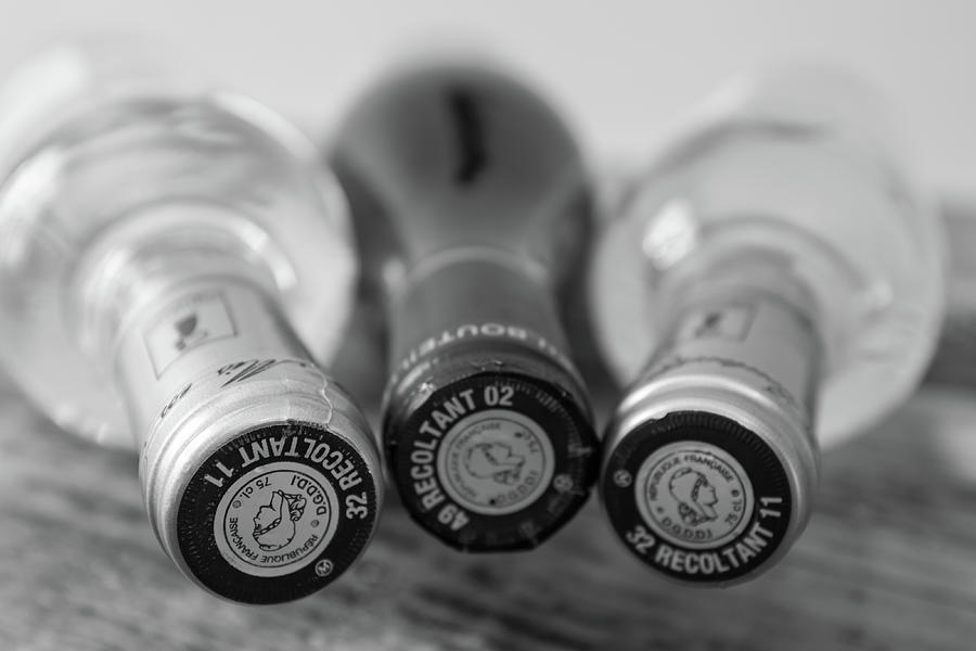 French Wine Bottles Photograph - French Wine Bottles by Georgia Fowler