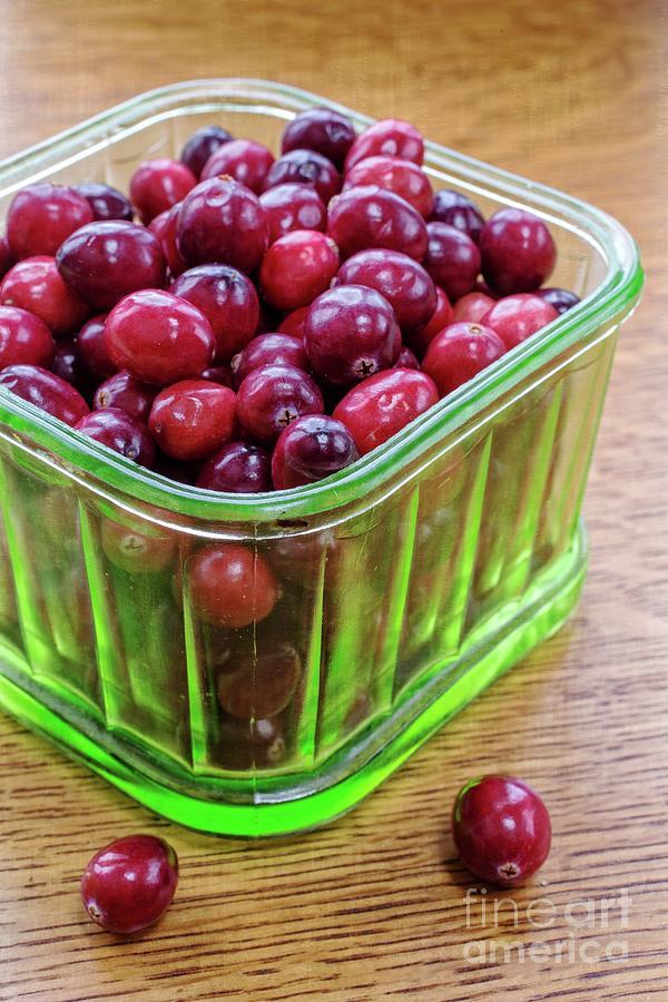 Food Photograph - Fresh Cape Cod Cranberries by Edward Fielding