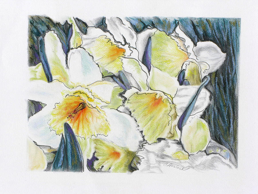 Flowers Pastel - Fresh Faces by Carole Haslock
