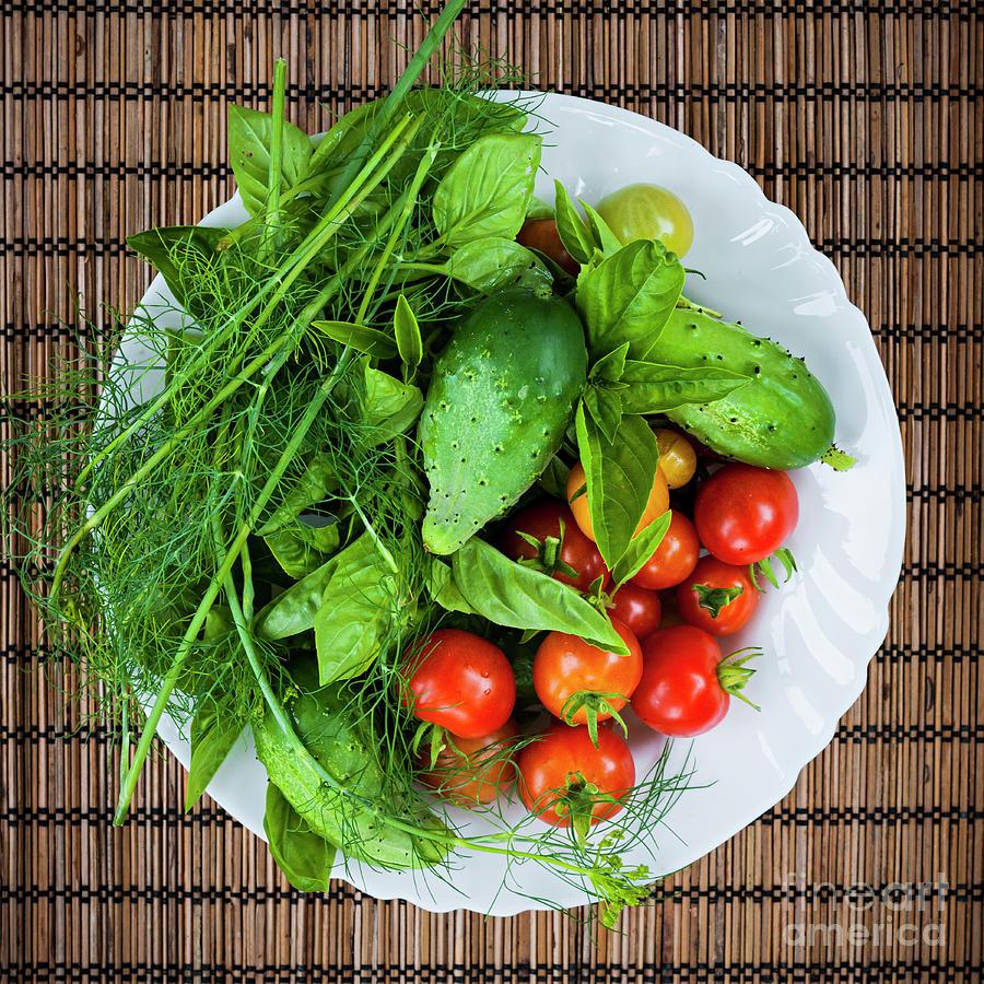 Vegetables Photograph - Fresh Garden Vegetables by Elena Elisseeva