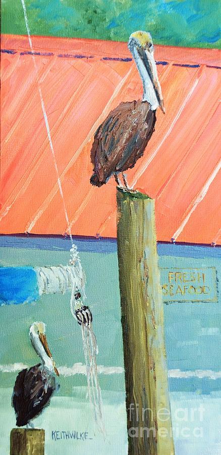 Fresh Pelican by Keith Wilkie