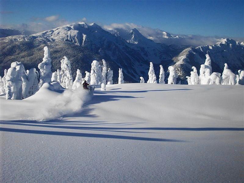 Fresh Powder Snow Photograph b...
