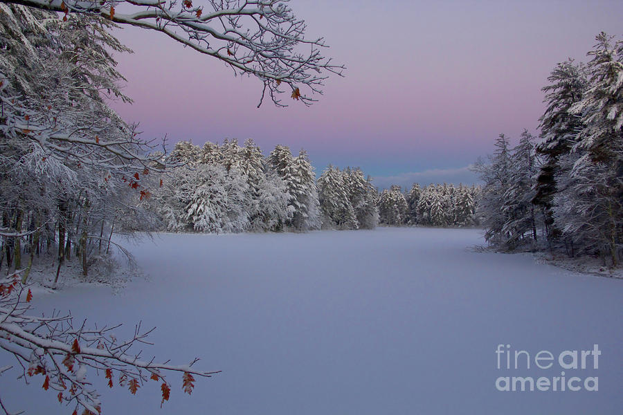 New Hampshire Landscapes Photograph - Fresh Snow by Diana Nault