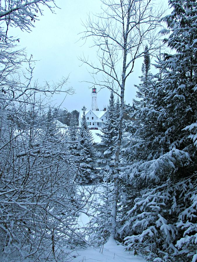 Fresh Snow by Greta Larson Photography