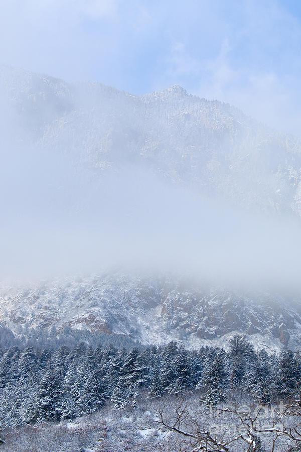Fresh Snow In Cheyenne Mountain State Park Photograph
