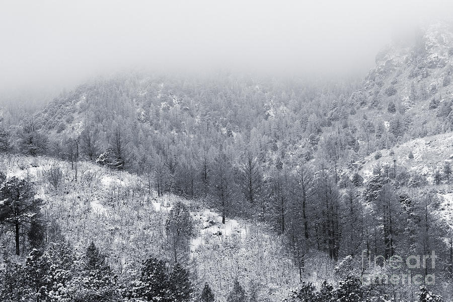 Fresh Snow In Cheyenne Mountain Toned Color Photograph