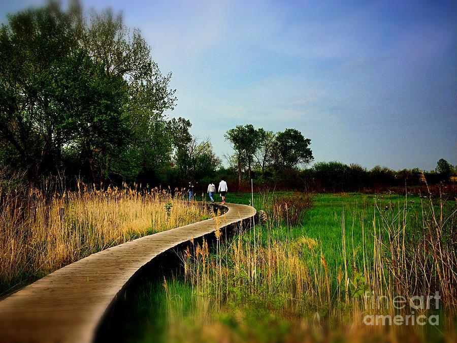 Friends Walking The Wetlands Trail Photograph
