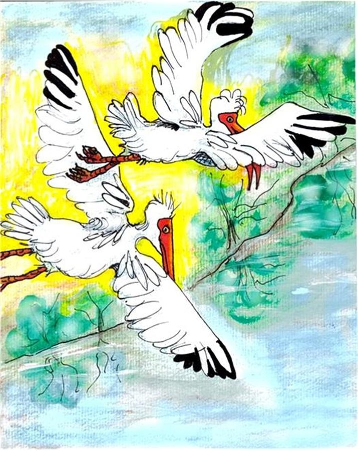 Ibis Drawing - Friendship by Carol Allen Anfinsen