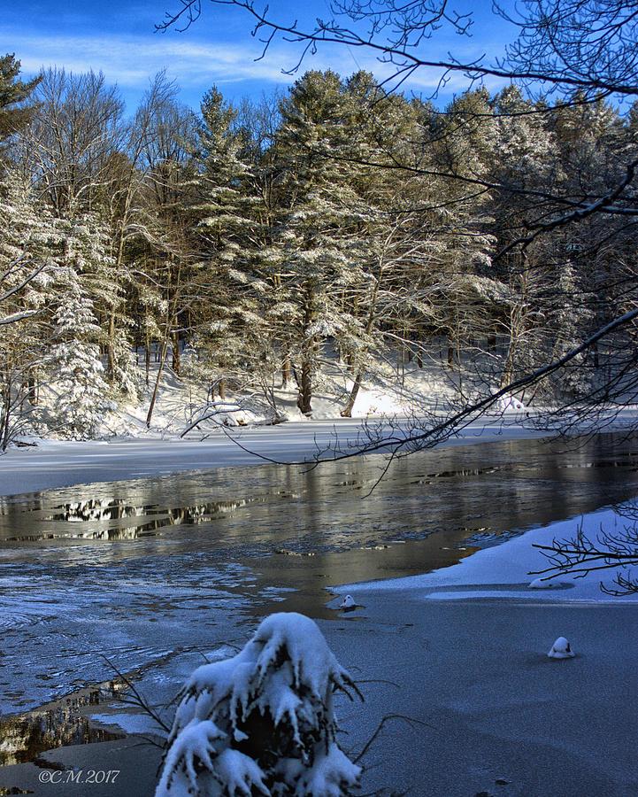 Winter Photograph - Frigid Slumber by Catherine Melvin