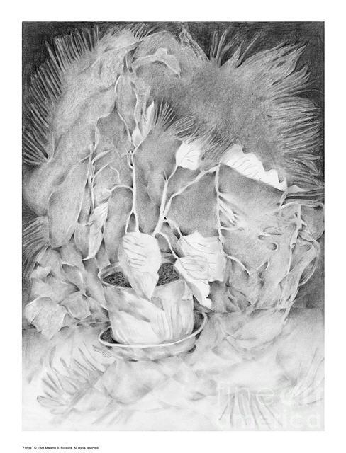 Pot Drawing - Fringe by Marlene Robbins