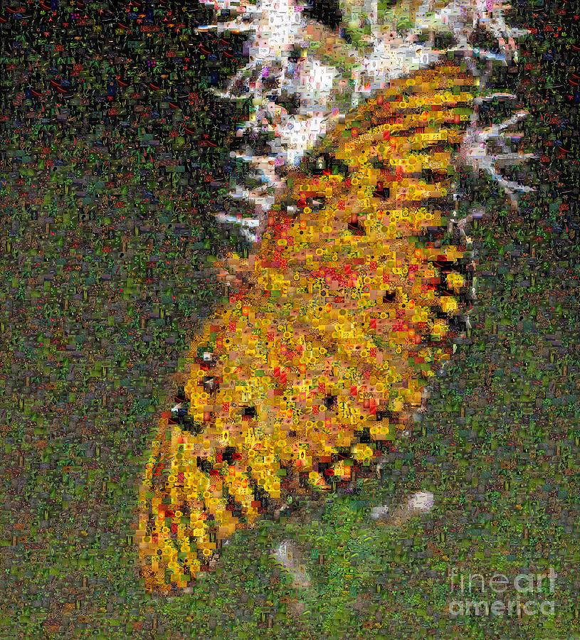 Photographic Mosaic Photograph - Fritillary Butterfly Mosaic by Scott Camazine
