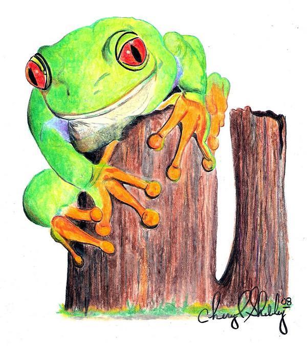 Frog Drawing - Frog And Stump by Cheryl Shibley