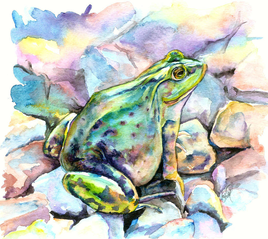 Frog Painting - Frog by Christy Freeman Stark