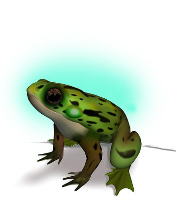 Frog Digital Art by Ritu Raj