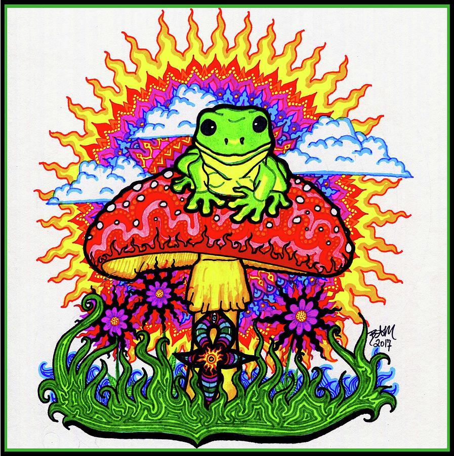 Froggy For Mukunda by Baruska A Michalcikova