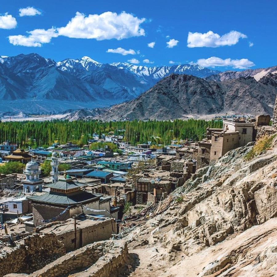 From The Kings Palace In Leh, India Photograph by Aleck Cartwright