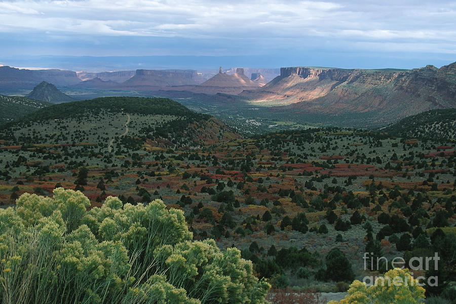 Utah Photograph - From The La Sal Mountains by Stan and Anne Foster