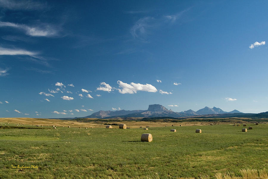 From the Prairie to the Rockies by Tom Buchanan