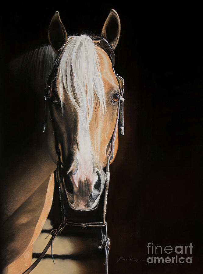Palomino Pastel - From the Shadows by Joni Beinborn