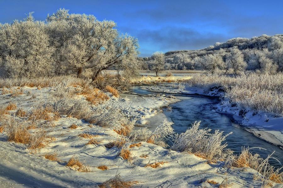 Frost Along The Creek by Bruce Morrison