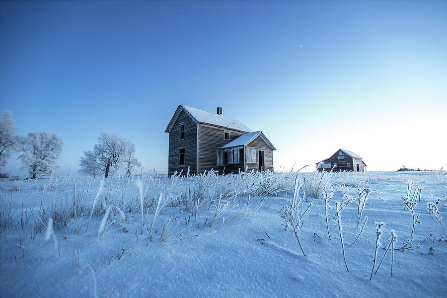 Frosted by Aaron J Groen