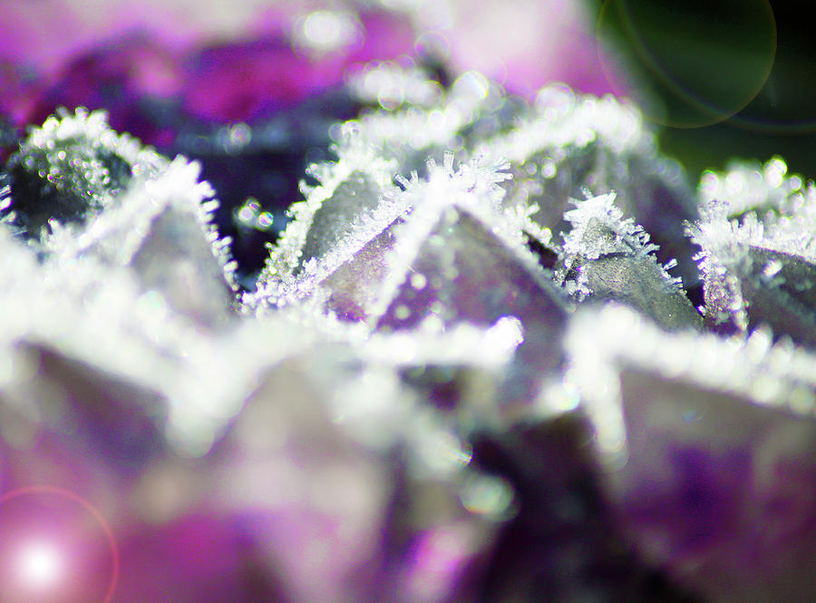 Amethyst Photograph - Frosted Crystal Amethyst by Ave Guevara